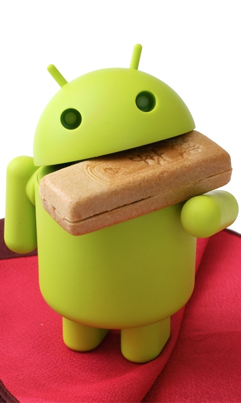 Android eat Biscuit Windows Phone Wallpaper