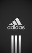 Gray adidas Logo