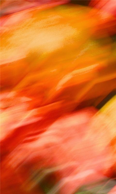 Fire Blur Windows Phone Wallpaper