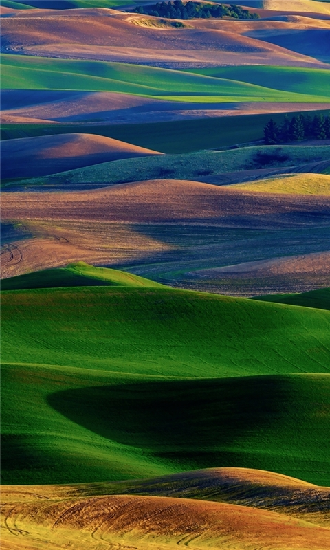 Amazing Colorful Hills Windows Phone Wallpaper