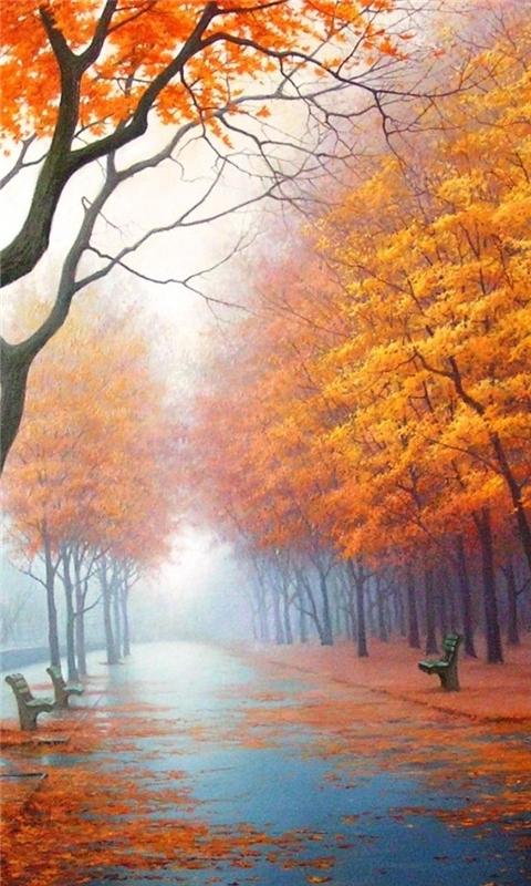 Autumn Road Windows Phone Wallpaper