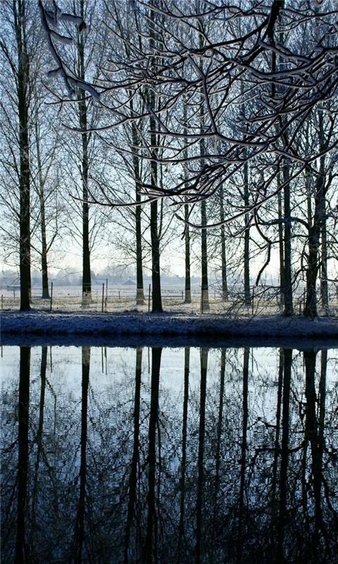 Reflection Kromme Rijn River Windows Phone Wallpaper