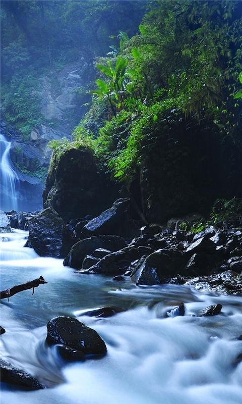 Beautiful Taiwan Forest Waterfalls Windows Phone Wallpaper
