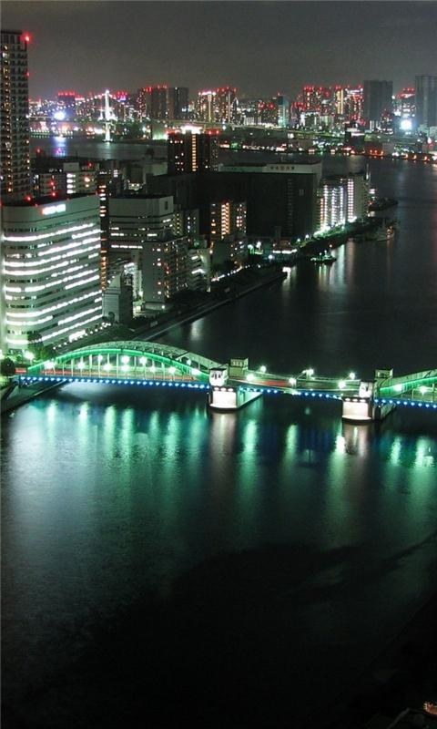Tokyo Panoramic City Night Windows Phone Wallpaper
