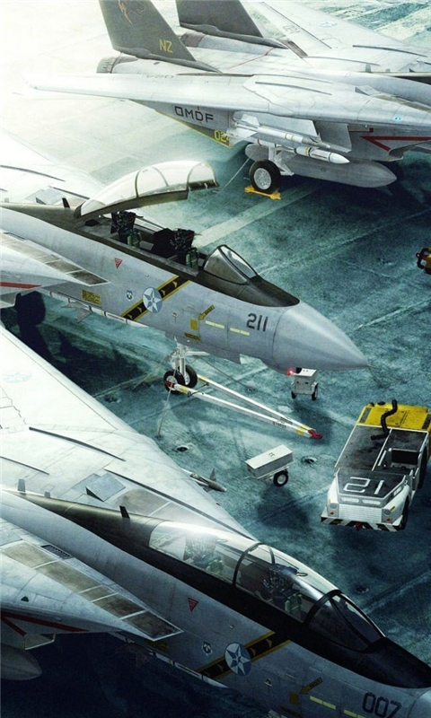 Grumman F 14 Tomcat Windows Phone Wallpaper