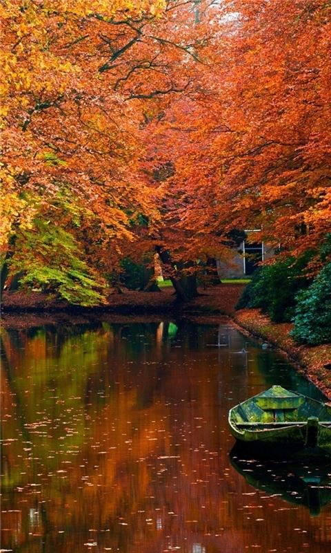 Lake in autumn landscape Windows Phone Wallpaper