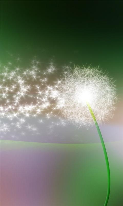 Dandelion Green Windows Phone Wallpaper