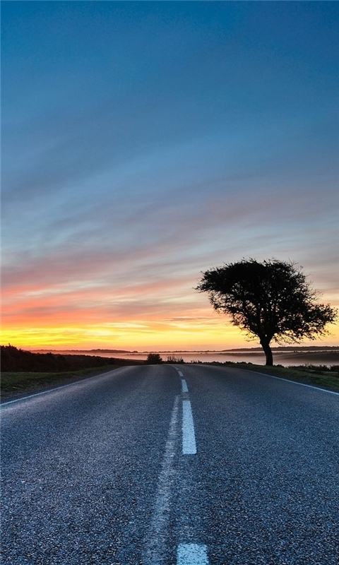 Hdr Road Windows Phone Wallpaper