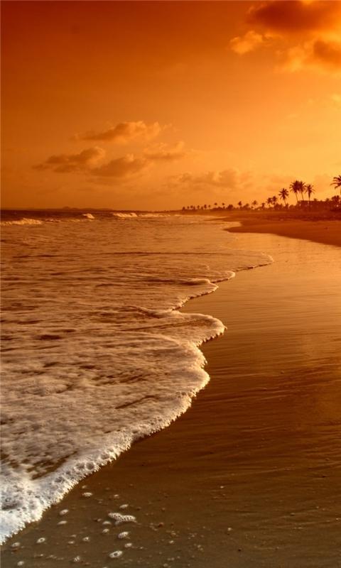 Beach Sunrise Windows Phone Wallpaper