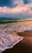 Shore waves