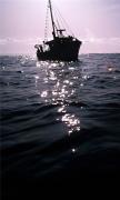 The Dark Boat On Sea