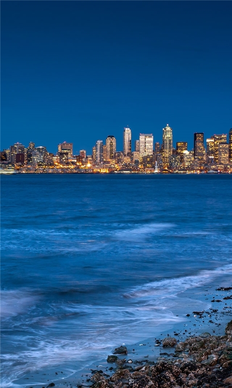 Seattle from the beach Windows Phone Wallpaper