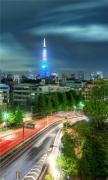 Tokyo Evening