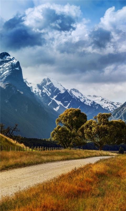 New Zealand Summer Landscape Windows Phone Wallpaper