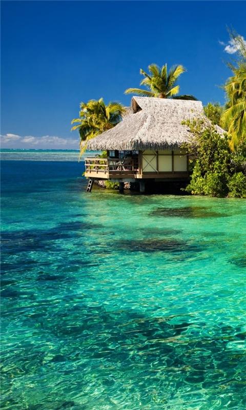 Tropical Resort Windows Phone Wallpaper