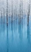 Snow Pond