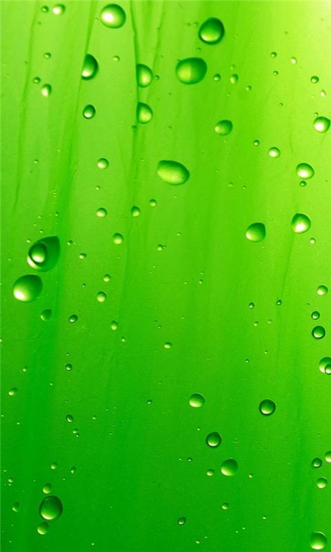 Green Drops Windows Phone Wallpaper