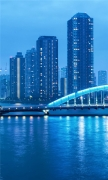 Tokyo Night Landscape