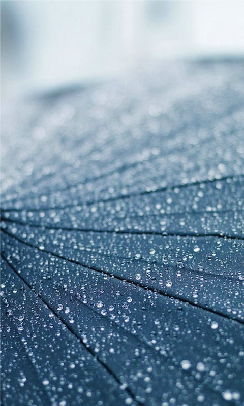 Umbrella Windows Phone Wallpaper