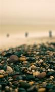 Beach Pebbles Autumn