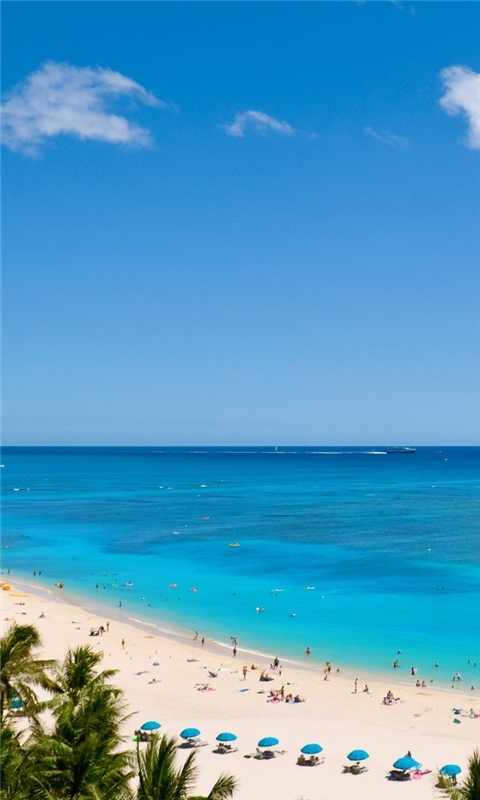 Waikiki Beach And Pacific Ocean Windows Phone Wallpaper