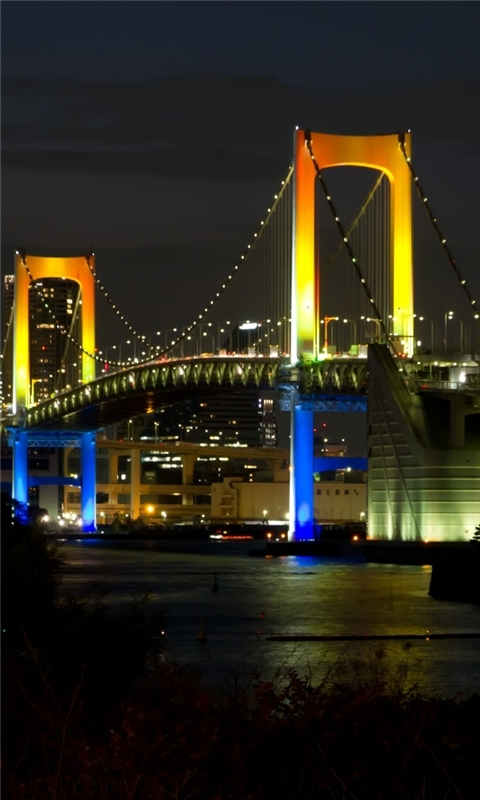 Tokyo Rainbow Bridge Windows Phone Wallpaper