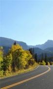 winding road autumn