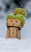 Danbo Discovering Snow