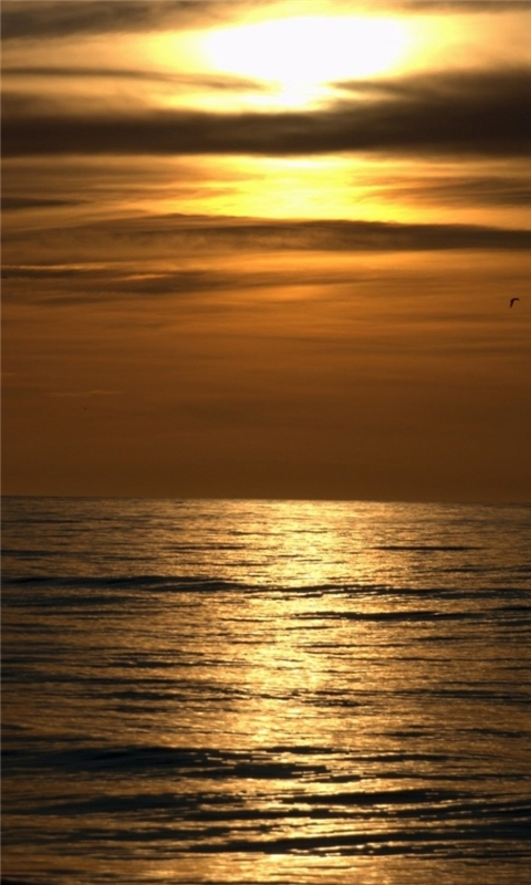 Dark Sunset Beach Windows Phone Wallpaper