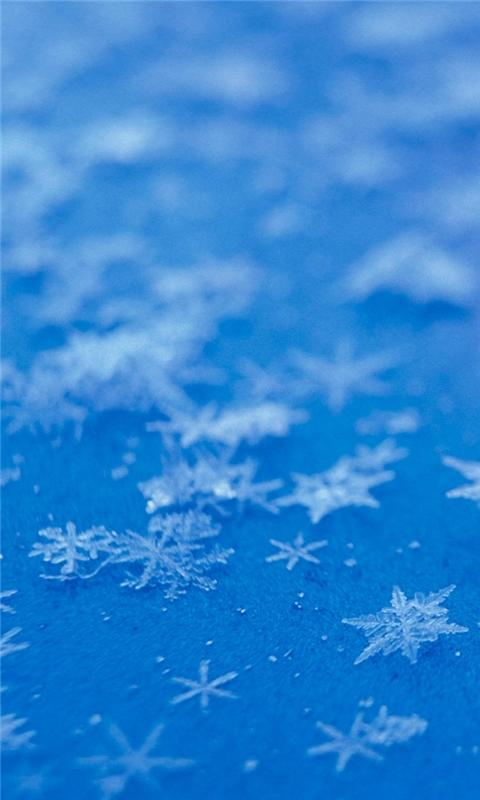 Snowflake blue background Windows Phone Wallpaper