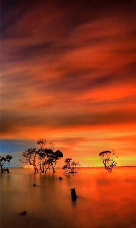 Sunset Horizon Windows Phone Wallpaper