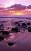 molokai shore hawaii