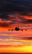 Landing Plane Sunset
