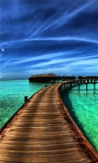 Paradise Skyscapes