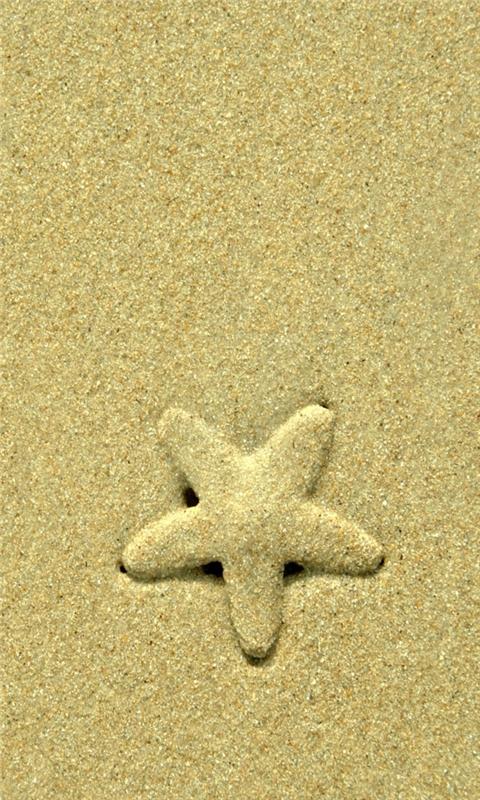 Starfish Windows Phone Wallpaper