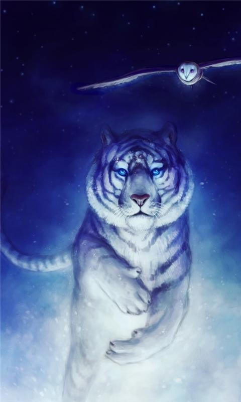 White Tiger Owl Art Windows Phone Wallpaper Freewpwallpapers