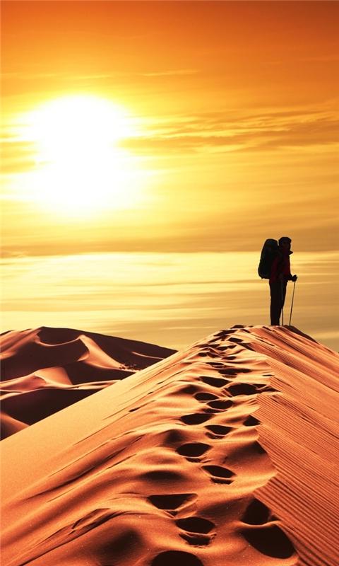 Desert Sunset Windows Phone Wallpaper