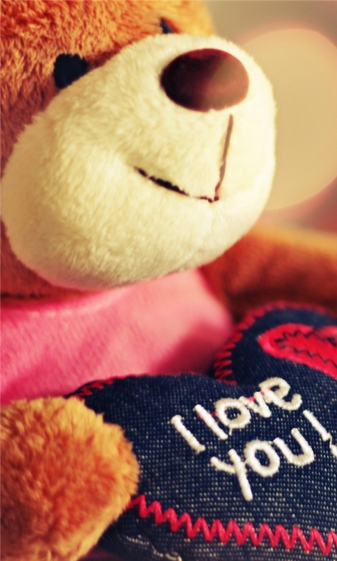 I Love You Teddy Bear Windows Phone Wallpaper