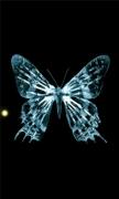 Butterfly fringe