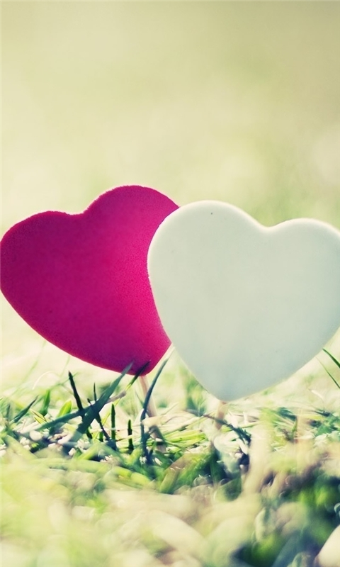 Valentines Day Hearts 2 Windows Phone Wallpaper
