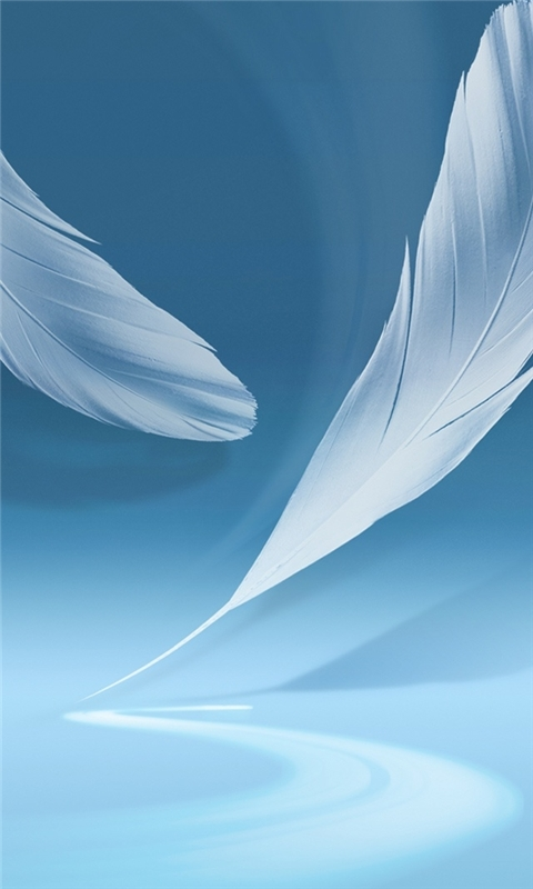 Samsung Galaxy Feathers Windows Phone Wallpaper