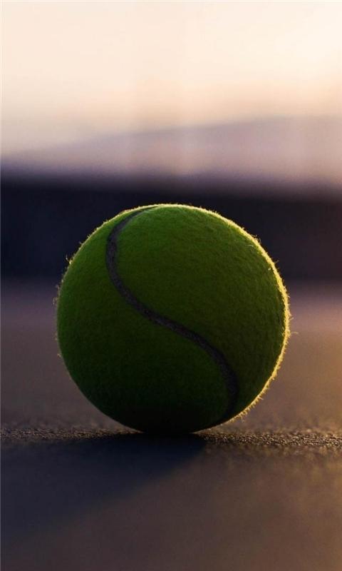 Tennis Ball Asphalt Windows Phone Wallpaper