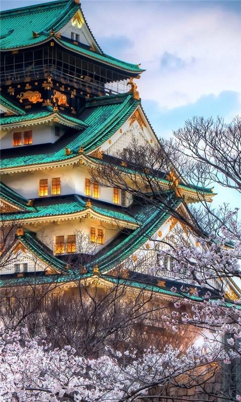 Japanese House in Sakura Windows Phone Wallpaper